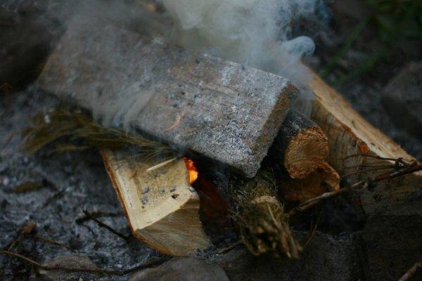 Сосновые ветки в костер