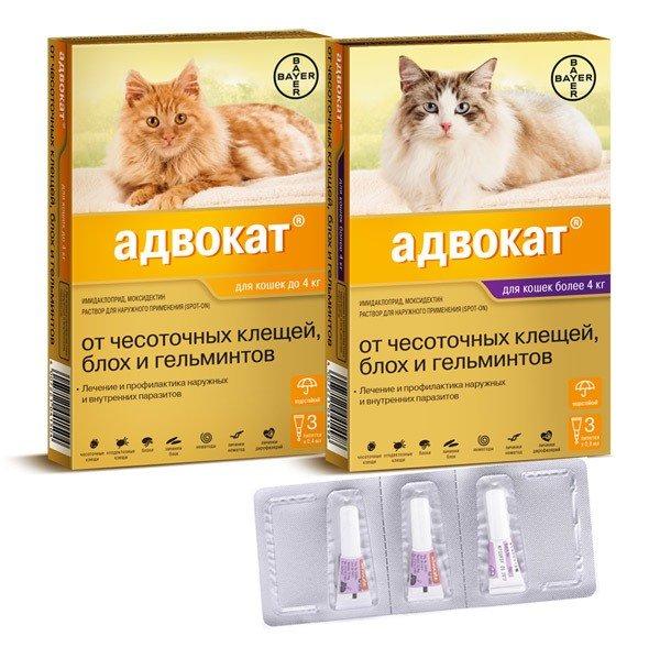 Препарат Адвокат