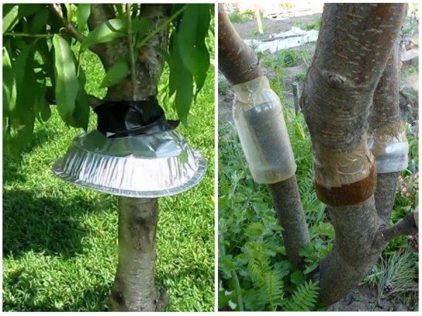 Защитные «юбочки» на деревья
