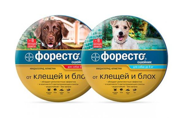 Ошейники для собак Форесто
