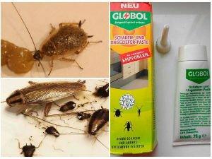 Средство от тараканов Globol