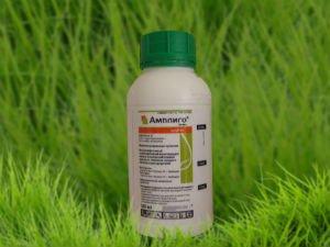 Инсектицид Амплиго