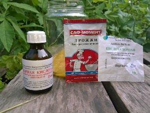 Рецепты от муравьев с борной кислотой