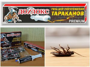 Средство от тараканов Дохлокс