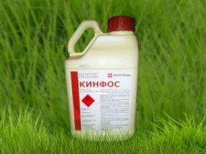 Инсектицид Кинфос