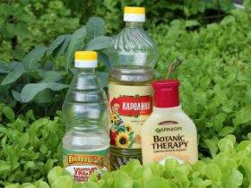 Рецепты с уксусом от комаров